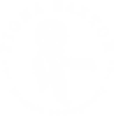 Fiona saxton Lifestyle Photography